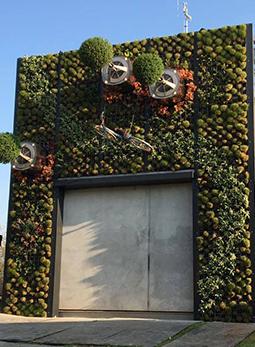 Zelfvoorzienend systeem verticale tuin - Schadenberg Stedegroen