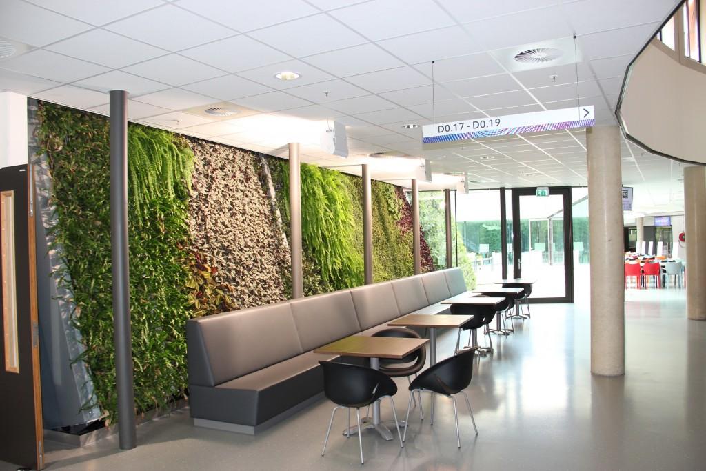 Vertical Plant System - Schadenberg Stedegroen