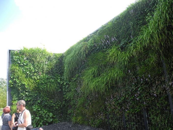 Verticale tuin Berlijn - Schadenberg Stedegroen