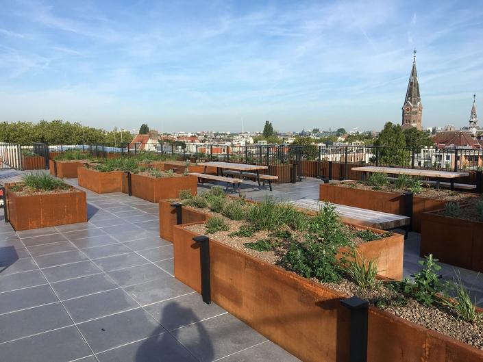 Karel du Jardinstraat - Schadenberg Stedegroen