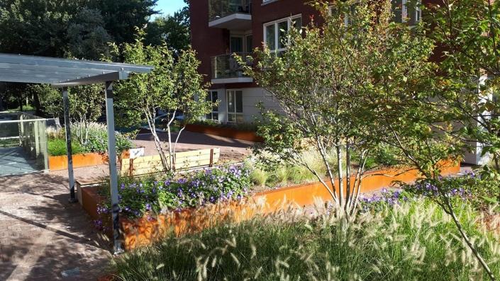 Daktuin en Binnentuin Oude Haagweg - Schadenberg Stedegroen