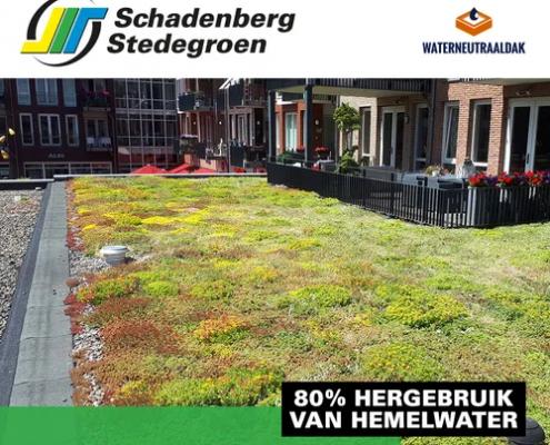 schadenberg-stedegroen-waterneutraaldak